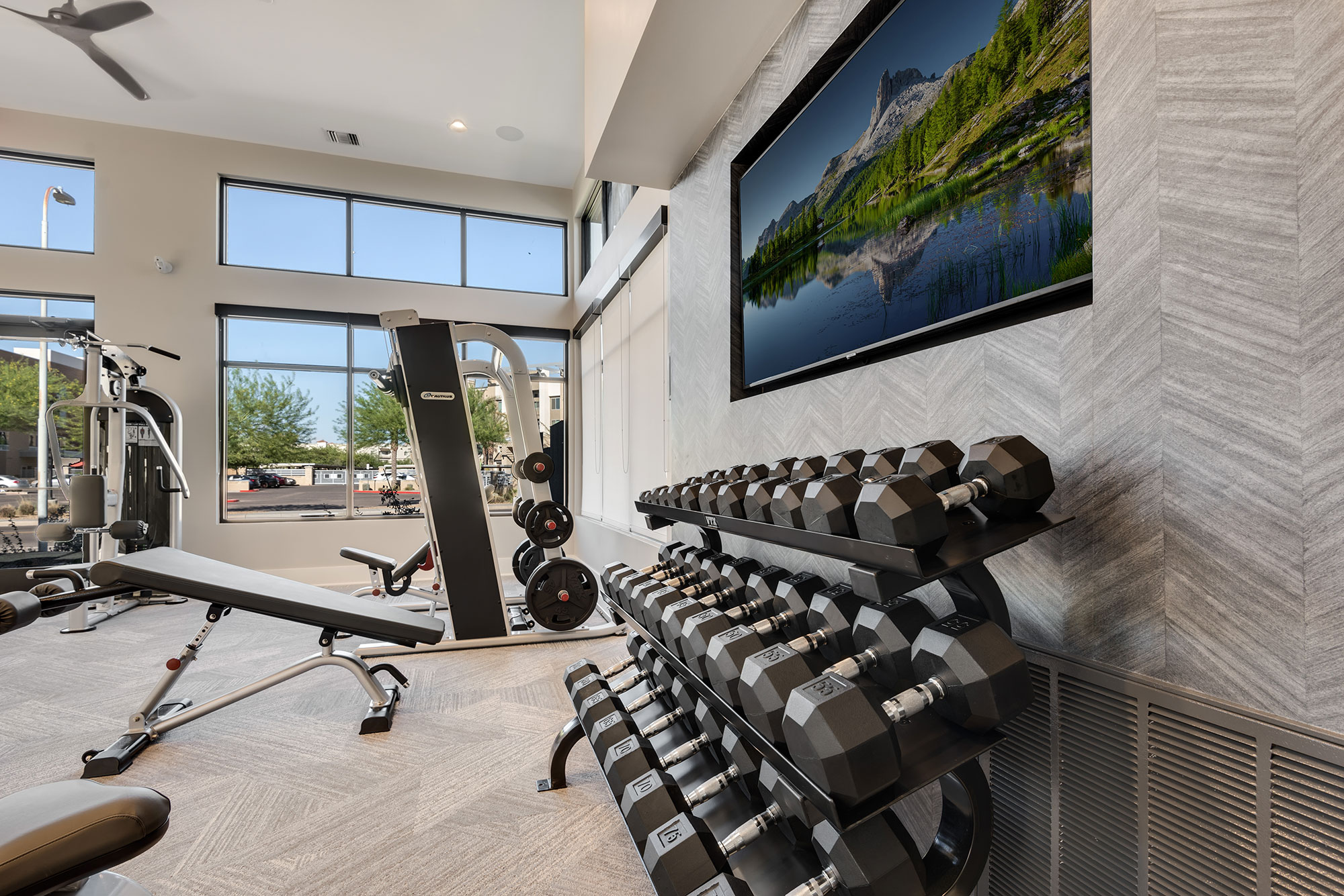 Riata - Fitness room free weights