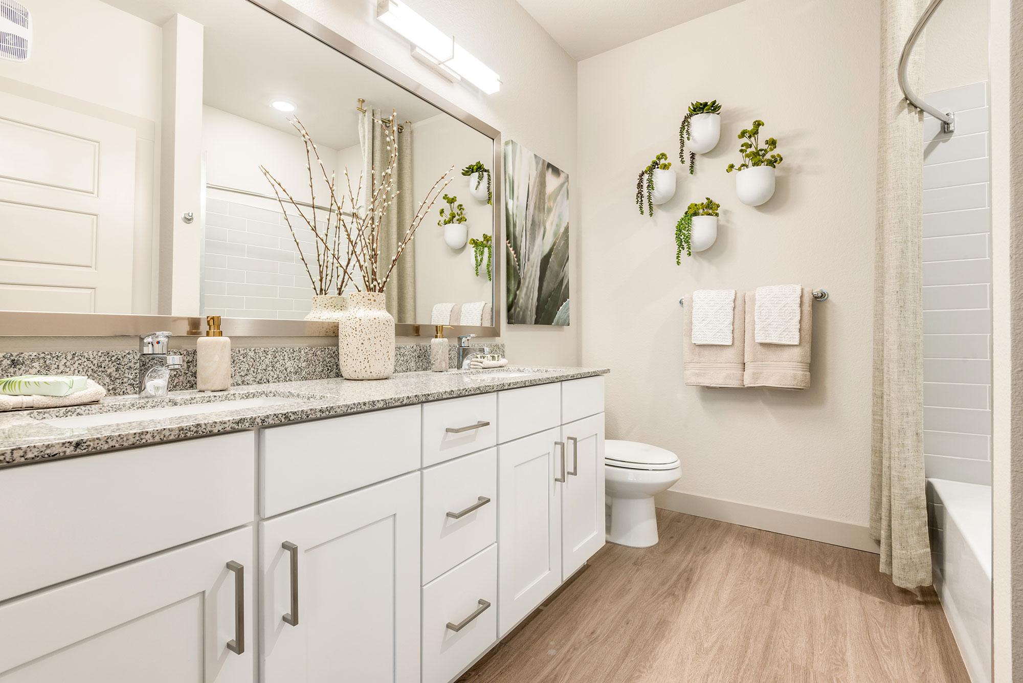 Riata - Model Unit - Large Bathroom vanity